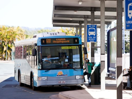Free bus travel is available on New Year