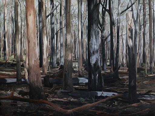 sunshine coast art prize, victoria watts, peoples choice